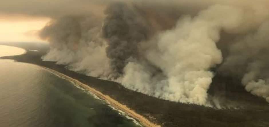 Bushfire Relief Support